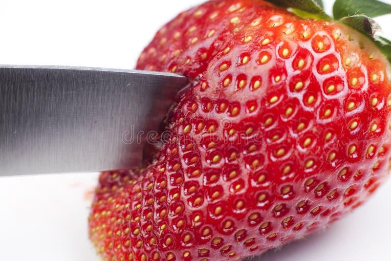 El beeing de la fresa cortado foto de archivo libre de regalías