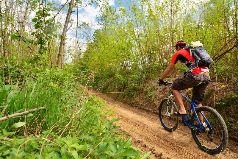 El biking de la montaña fotografía de archivo
