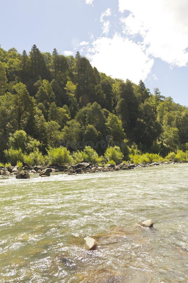 El bio bio río, Chile imagen de archivo