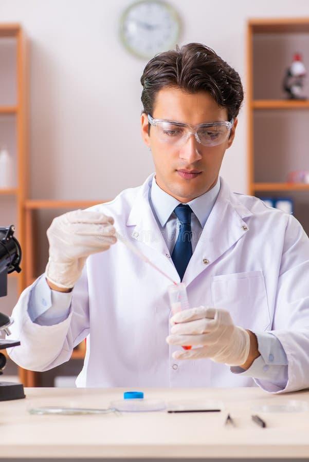 El bioquímico hermoso joven que trabaja en el laboratorio imagen de archivo