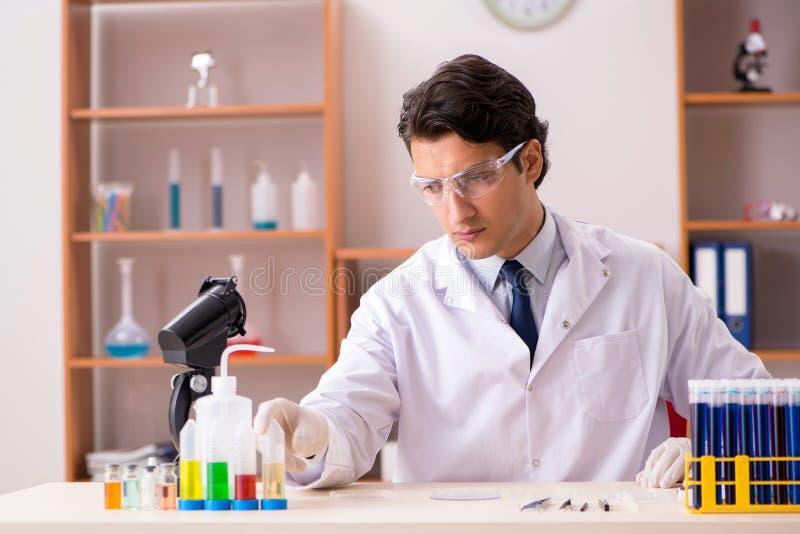 El bioquímico joven que trabaja en el laboratorio imágenes de archivo libres de regalías