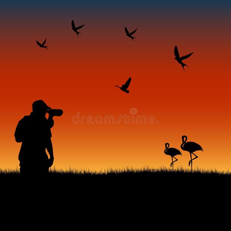 El Birdwatching en la puesta del sol libre illustration