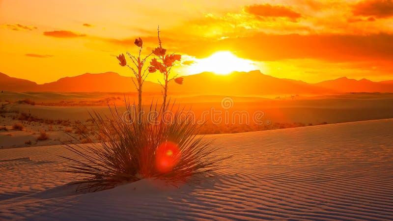 El blanco enarena la puesta del sol del monumento nacional, New México - Timelapse fotos de archivo libres de regalías