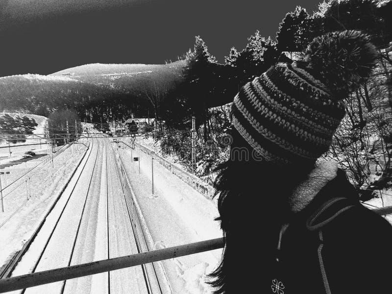 El blanco negro sigue el bosque del invierno fotos de archivo