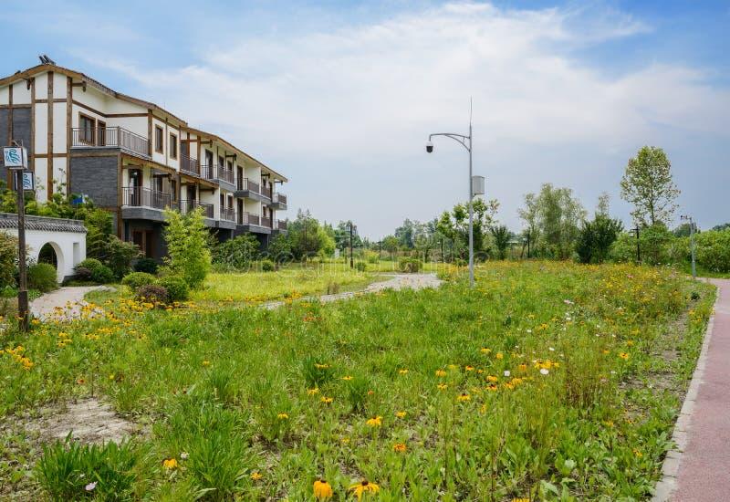 El borde del camino florece antes del edificio de la vivienda del campo en verano soleado fotos de archivo libres de regalías