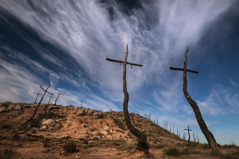 The Forest of the Crosses royalty free stock photos