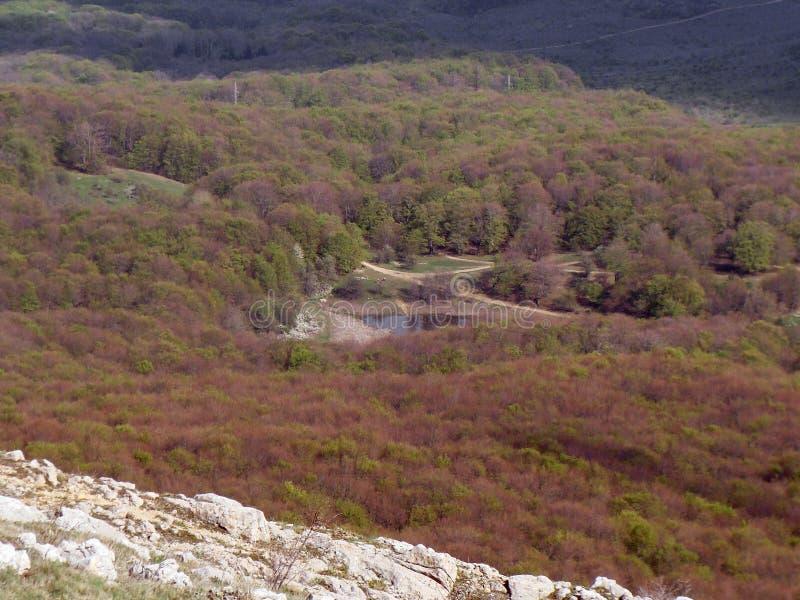 El bosque anaranjado cubre las colinas como una alfombra en la primavera Pequeño lago de la montaña imagen de archivo libre de regalías