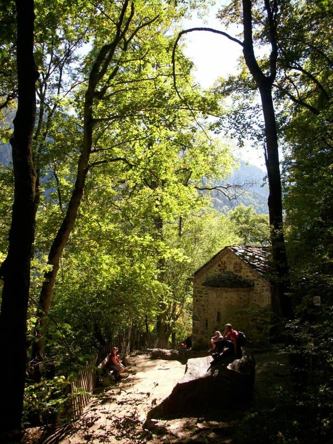 El bosque cerca del monasterio de Rila fotos de archivo libres de regalías