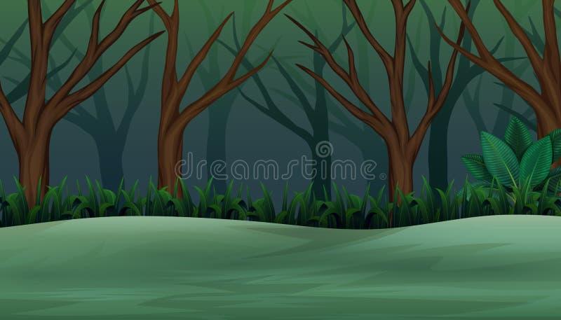 El bosque de helloween en la tarde y brumoso libre illustration