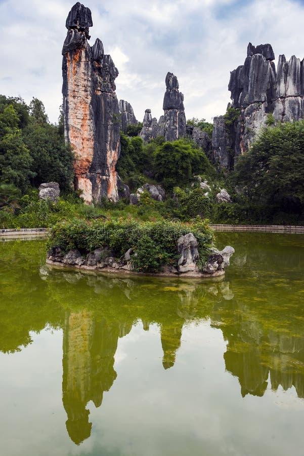 El bosque de piedra imagen de archivo libre de regalías