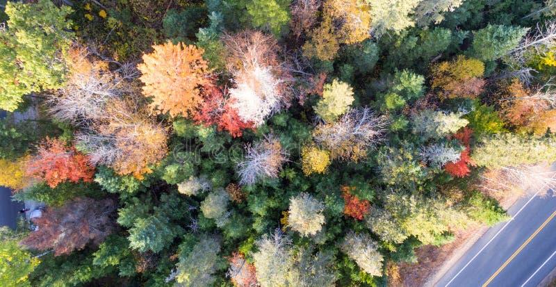 El bosque y el camino de Nueva Inglaterra en foliag sazonan la visión de arriba desde foto de archivo libre de regalías