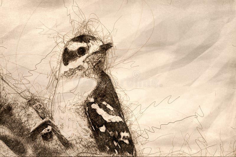 El bosquejo de una pulsación de corriente suave joven se encaramó en una rama libre illustration