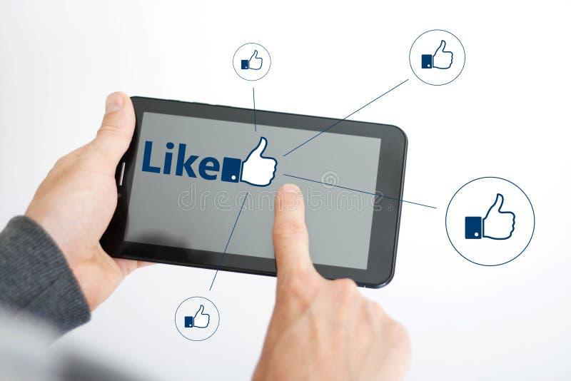 El botón le gusta medios sociales en línea del icono de la red imagen de archivo libre de regalías