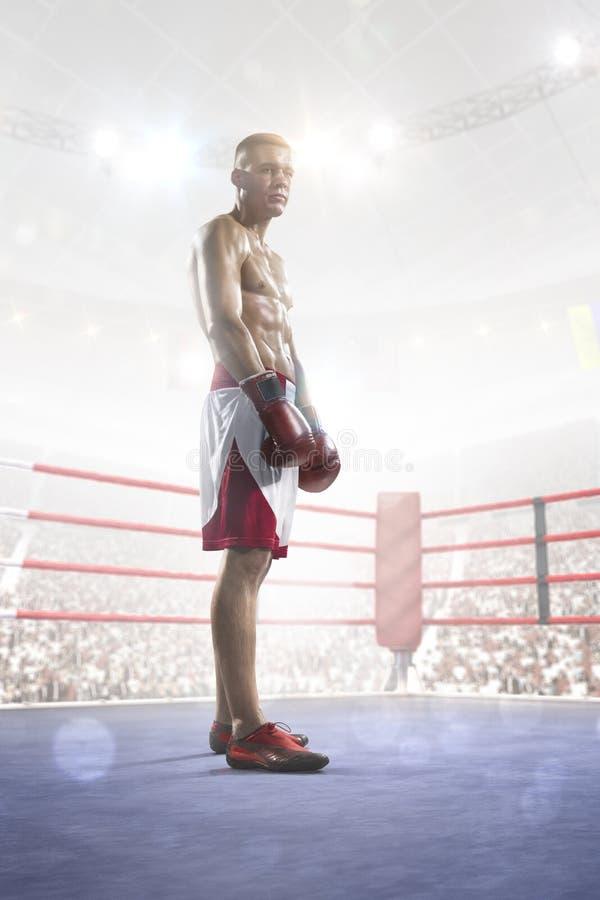 El boxeador profesional está entrenando en la arena magnífica fotos de archivo