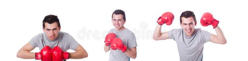 El boxeador que se prepara para el torneo aislado en blanco imagenes de archivo