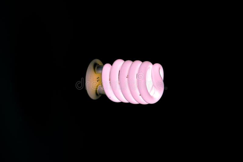 El brillar intensamente rosado del bulbo de CFL fotos de archivo