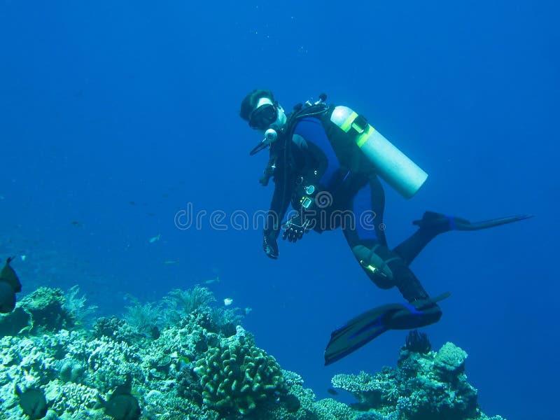 El buceador da vuelta para mirar la cámara El agua azul profundamente está en el fondo El buceador está llevando en el equipo lle foto de archivo libre de regalías