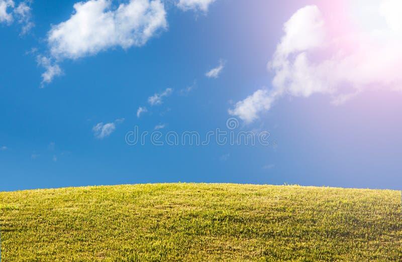 El césped o el prado herboso verde con el cielo azul y el sol señala por medio de luces imagen de archivo libre de regalías