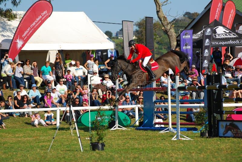 El caballo que salta a Barry Taylor foto de archivo libre de regalías