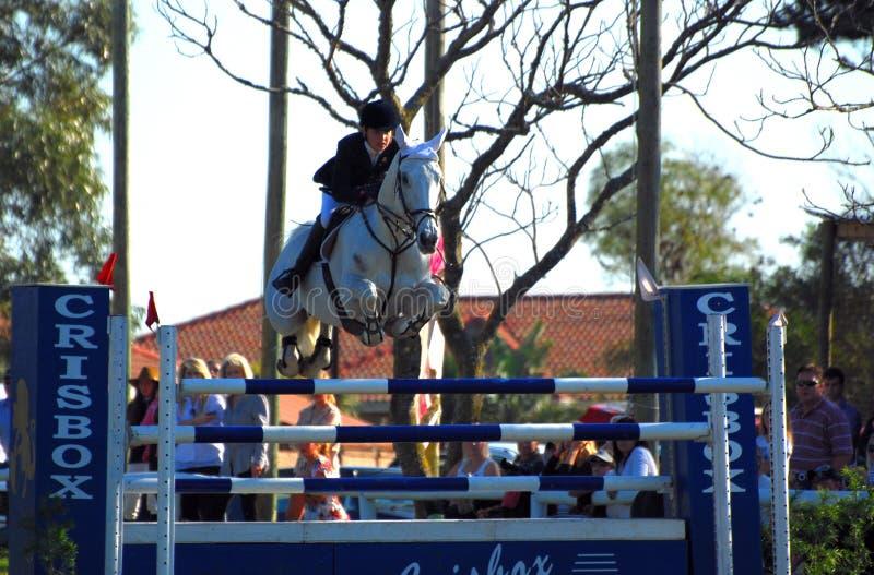 El caballo que salta - Kayla Gertenbach imágenes de archivo libres de regalías
