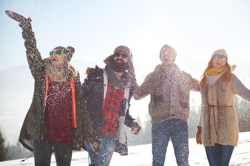 El caer de la nieve foto de archivo