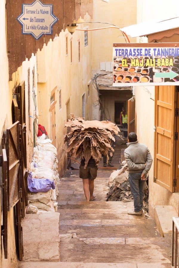 El camello que lleva del trabajador marroquí oculta a la curtiduría imagen de archivo