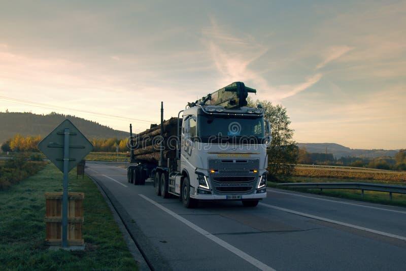 El camión de la madera con el piel-árbol abre una sesión la carretera foto de archivo