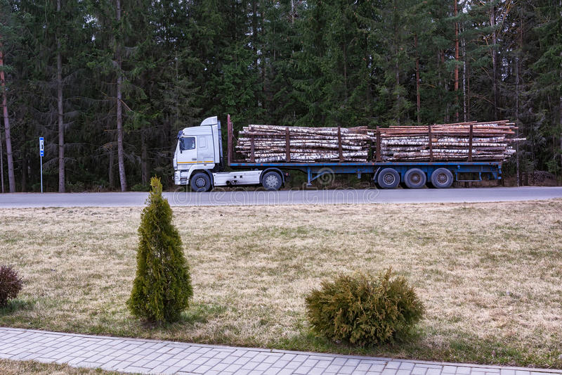 El camión especial transporta los troncos de árboles derribados imagen de archivo libre de regalías
