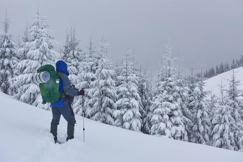 El caminante, con la mochila, está subiendo en la cordillera, y admira el pico coronado de nieve Aventura épica en el invierno fotos de archivo libres de regalías