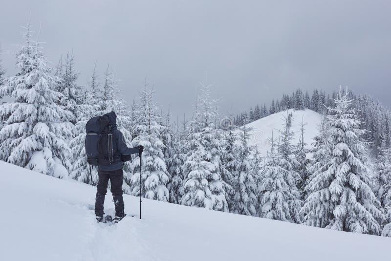 El caminante, con la mochila, está subiendo en la cordillera, y admira el pico coronado de nieve Aventura épica en el invierno imagen de archivo