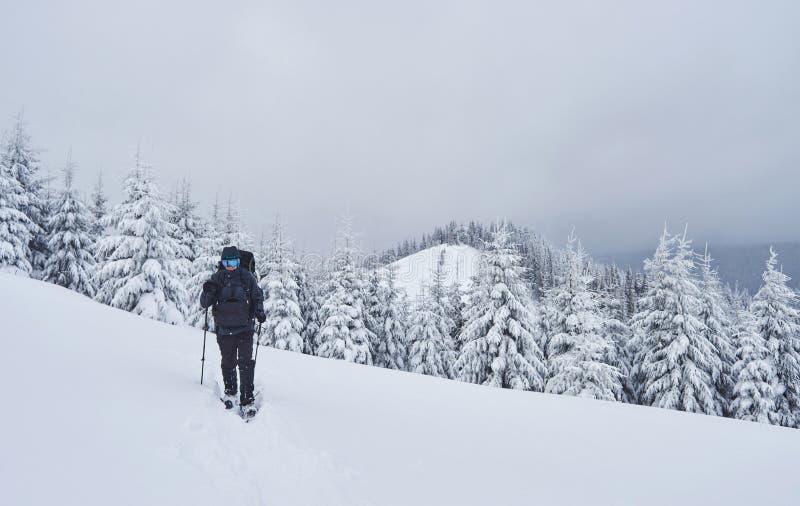 El caminante, con la mochila, está subiendo en la cordillera, y admira el pico coronado de nieve Aventura épica en el invierno fotos de archivo
