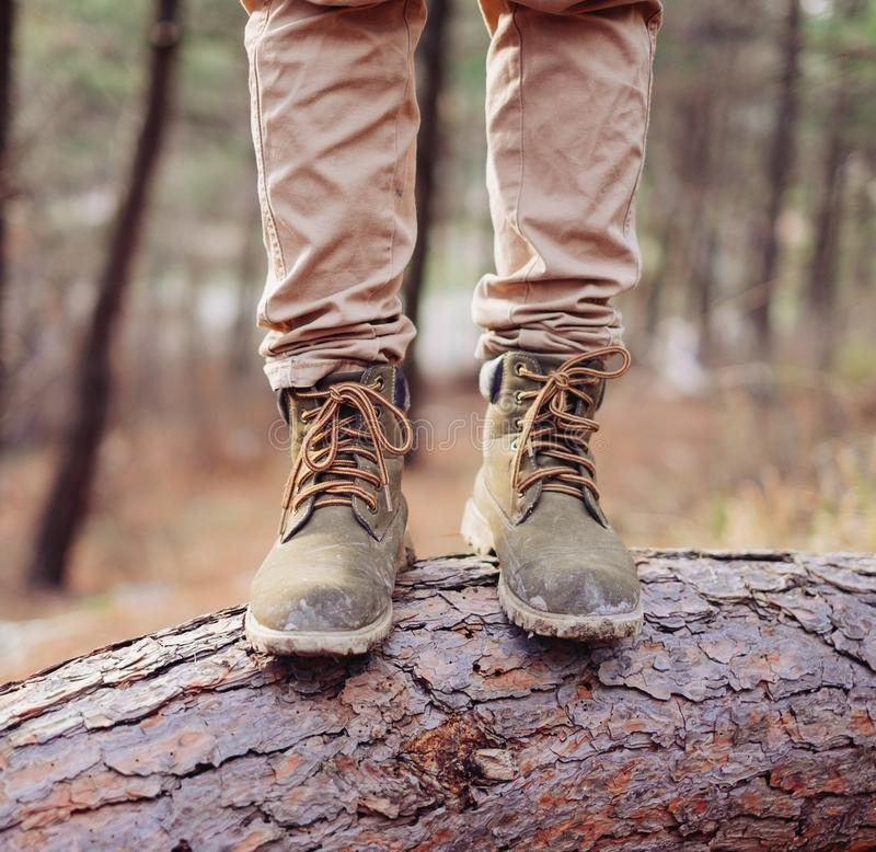 El caminante se coloca en tronco de árbol fotografía de archivo libre de regalías