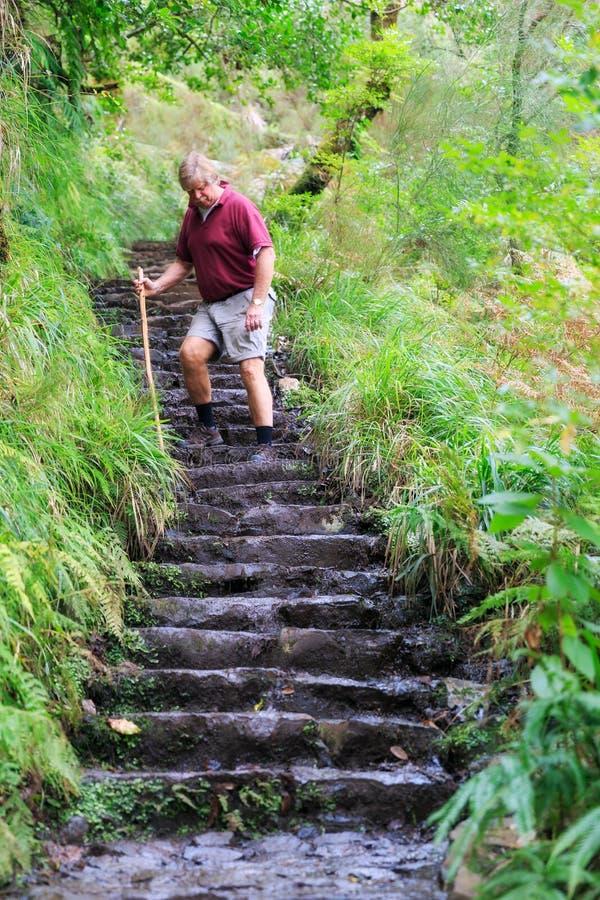 El caminar abajo de las escaleras Madeira fotografía de archivo