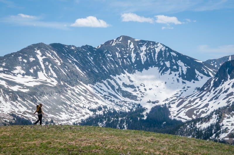 El caminar de la tundra imagen de archivo