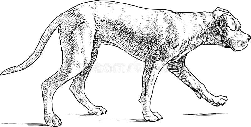 El caminar del perrito ilustración del vector