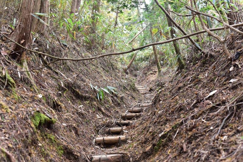 El caminar en el camino de la montaña en naturaleza fotos de archivo libres de regalías