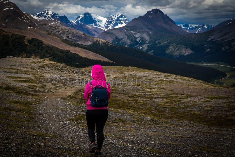 El caminar en Columbia Icefields imagen de archivo