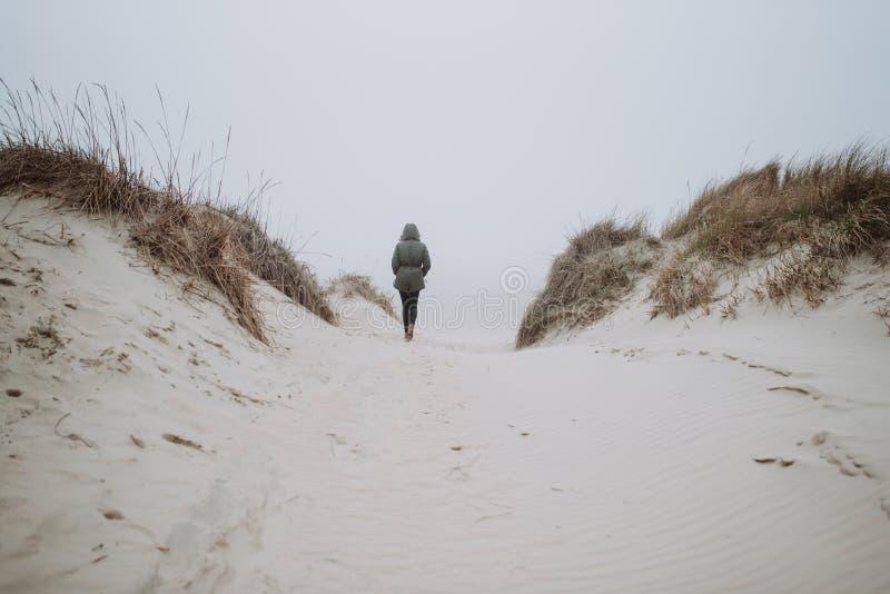El caminar en la playa del invierno foto de archivo libre de regalías