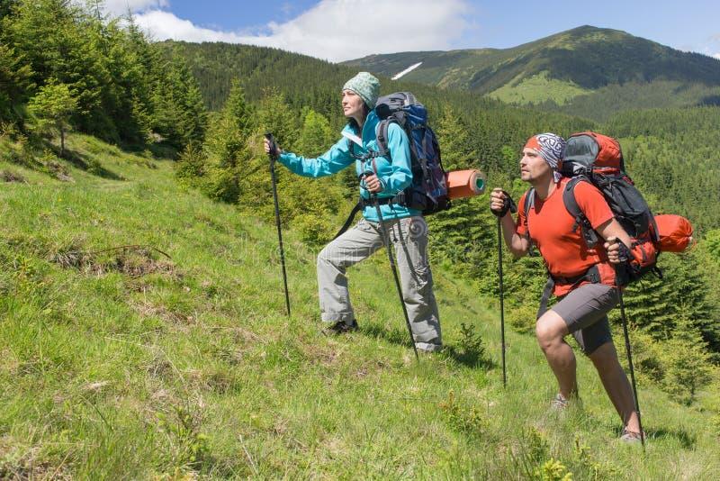 El caminar en las montañas en el verano en un día soleado fotografía de archivo libre de regalías