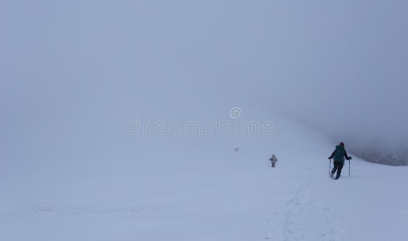 El caminar en las montañas en Rumania durante condiciones del invierno crudo foto de archivo libre de regalías