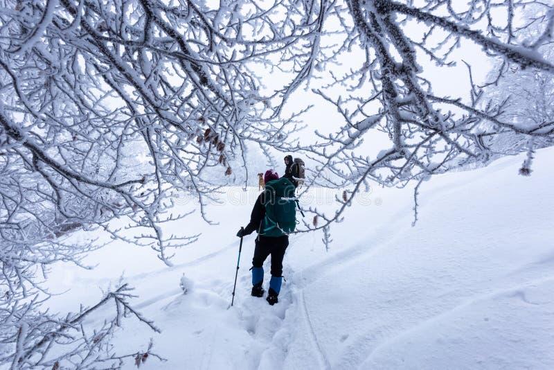 El caminar en las montañas en Rumania durante condiciones del invierno crudo fotos de archivo libres de regalías