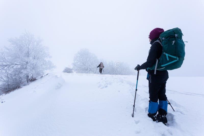 El caminar en las montañas en Rumania durante condiciones del invierno crudo imagen de archivo