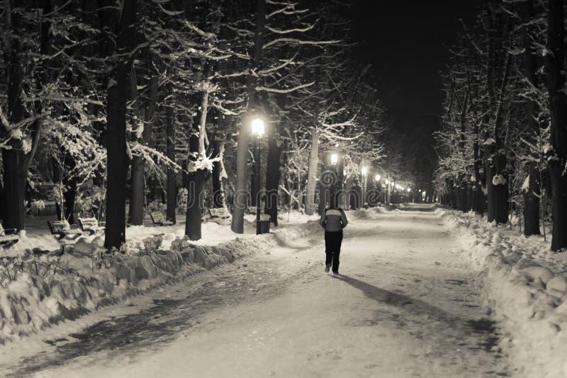 El caminar en el parque de Herastrau en invierno el noche fotos de archivo libres de regalías