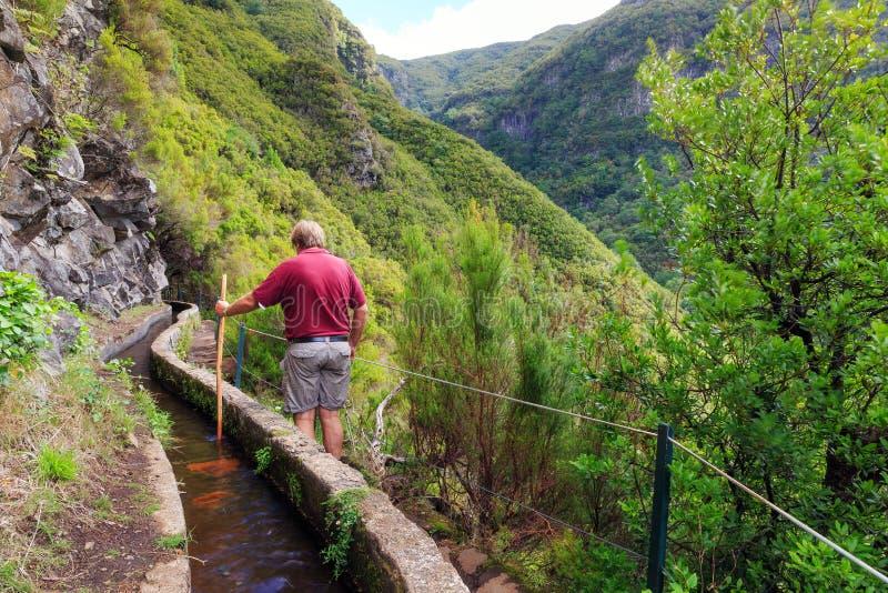 El caminar en el rastro Madeira del levada foto de archivo libre de regalías
