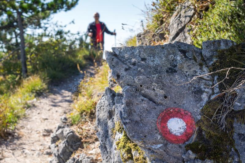 El caminar masculino en un día soleado en montañas foto de archivo