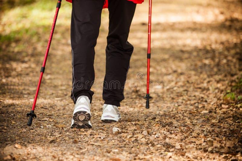 El caminar nórdico Piernas femeninas que caminan en bosque o parque fotos de archivo libres de regalías