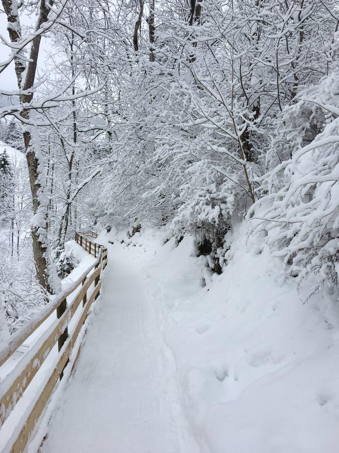 El caminar nevado en St Johann Pongau, Austria imágenes de archivo libres de regalías