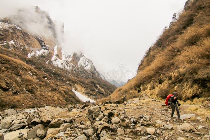 El caminar que viaja del backpacker de la mujer en montaña al aire libre activa de las vacaciones de verano de la aventura del co fotografía de archivo