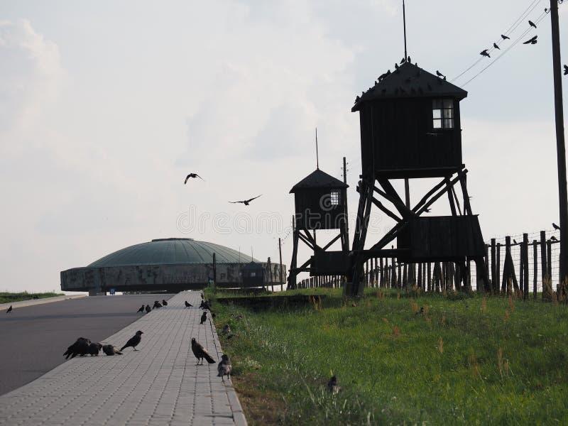 El camino al monumento de Majdanek foto de archivo libre de regalías