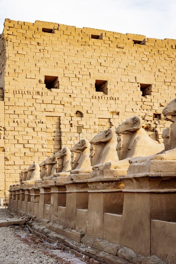 El camino al templo de Karnak con las estatuas del Ram fotos de archivo libres de regalías